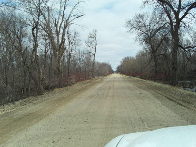 Another view to the east on the old road as it passes through the Buffalo River bottoms.